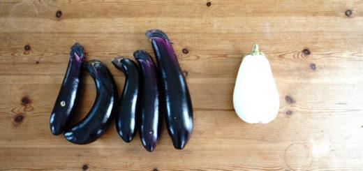 白いなすびと紫のなずび